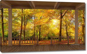 Багряный лес с веранды