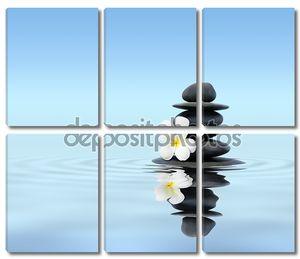 Цветок с камушками в воде