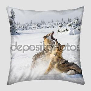 Волки в снегу