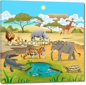 Африканских животных в природе.