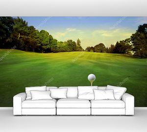 Мячик для гольфа на поле