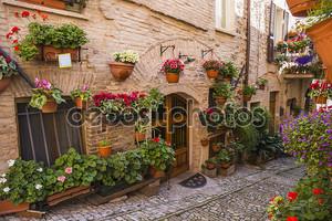 Цветочные улицы Спелло в Umbria, Италия.