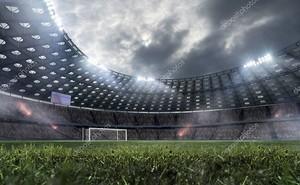 Стадион профессионального футбола .