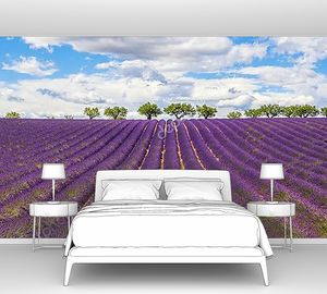 Панорамный вид на поле лаванды