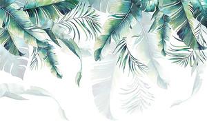 Перообразные листья