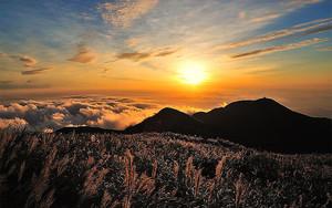 Солнце в вершинах