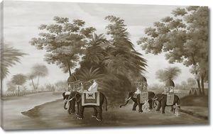 Индийские слоны в лесу