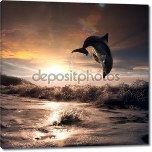 Красивый закат и Дельфин, прыгая из пены морской корыта
