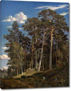 Иван Шишкин. Сосновый лес