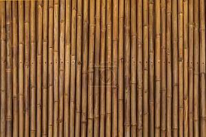 сухого бамбука картина фон