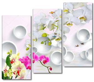 Белые кольца, белые, розовые и желтые орхидеи