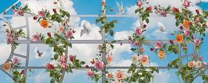 Небо через навес с цветами