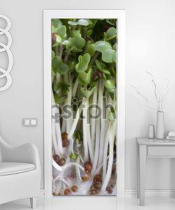 Брокколи ростки макрос