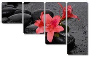 Красные лилии на мокром фоне