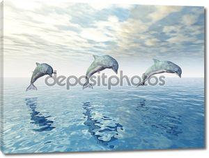 Прыжки дельфинов