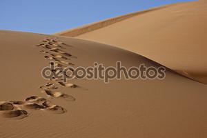 Следы в песок пустыни