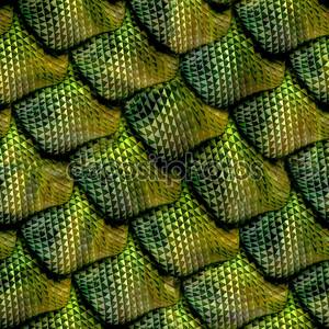 3D абстрактные бесшовные змеиной кожи, шкала рептилий