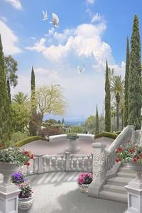Дворцовый сад