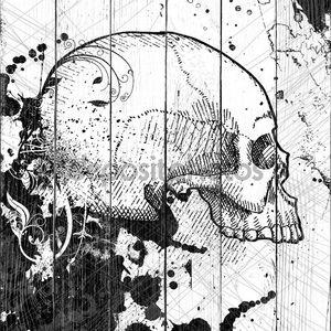 вектор черепа
