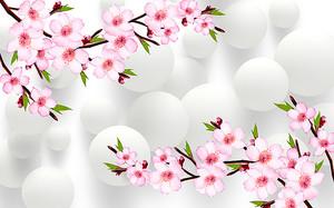 Сакура на фоне белых шаров
