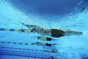 Мужской гонки в бассейне пловцы