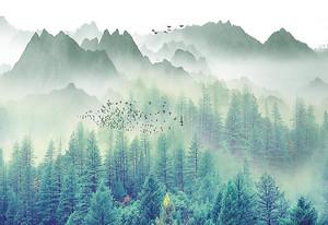 Лес и горы в тумане