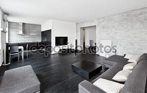 Современный минимализм интерьер гостиной в черно-белых тонах