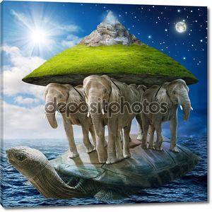 Мир черепаха