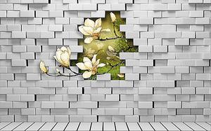 Магнолия в разломе стены